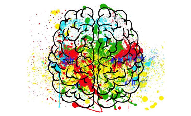 Ajustes Neurológicos